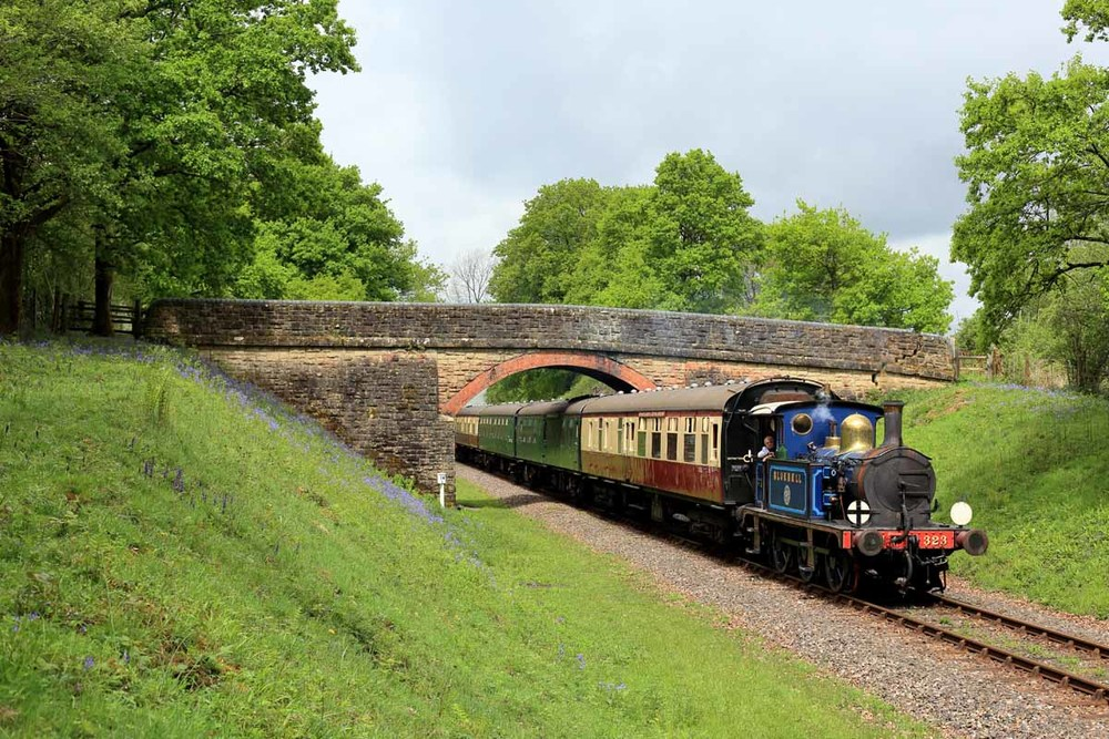 'Bluebell' amongst the bluebells on the Bluebell. Looking resplendent in a blue variation of its more familiar SE&CR livery, 'P' class 0-6-0T No. 323 'Bluebell' hauls a top-and-tail service under Birchstone Bridge. Credit: Dave Bowles