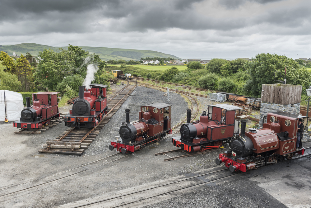 All five surviving Fletcher, Jennings locomotives at Tywyn. From L-R: 0-4-0T Townsend Hook, 0-4-0T Captain Baxter, 0-4-0WT Dolgoch, 0-4-0T William Finlay and 0-4-2ST Talyllyn. Credit: DARREN TURNER