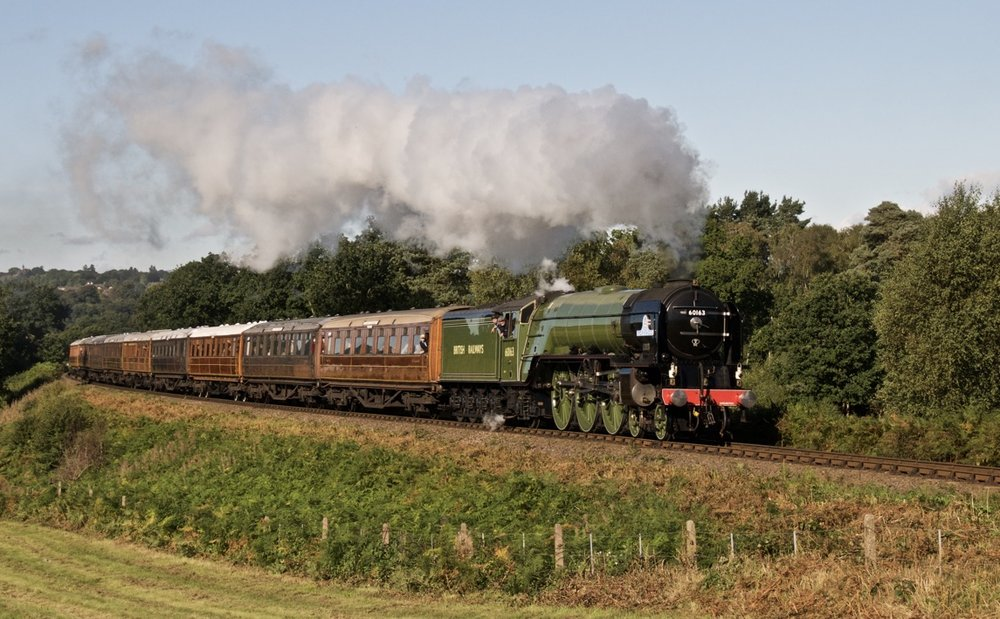 At the Severn Valley's Pacific Power event, Tornado, with nine Gresley teak coaches in tow, climbs towards Foley Park tunnel with the Bridgnorth-Kidderminster express on September 22. REV. ANDREW DOW