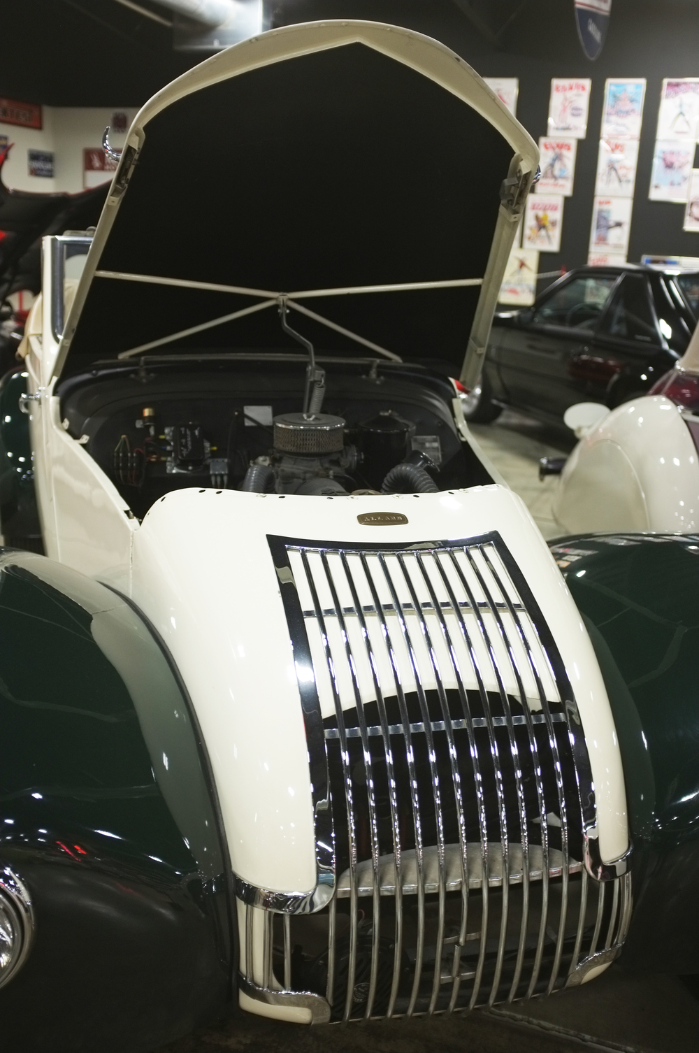 The unmistakeable snout of a 1949 Allard, one of many British cars in the collection.