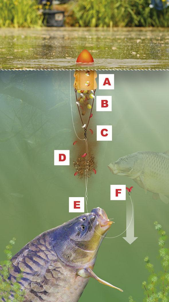 нетрадиционные методы рыбалки