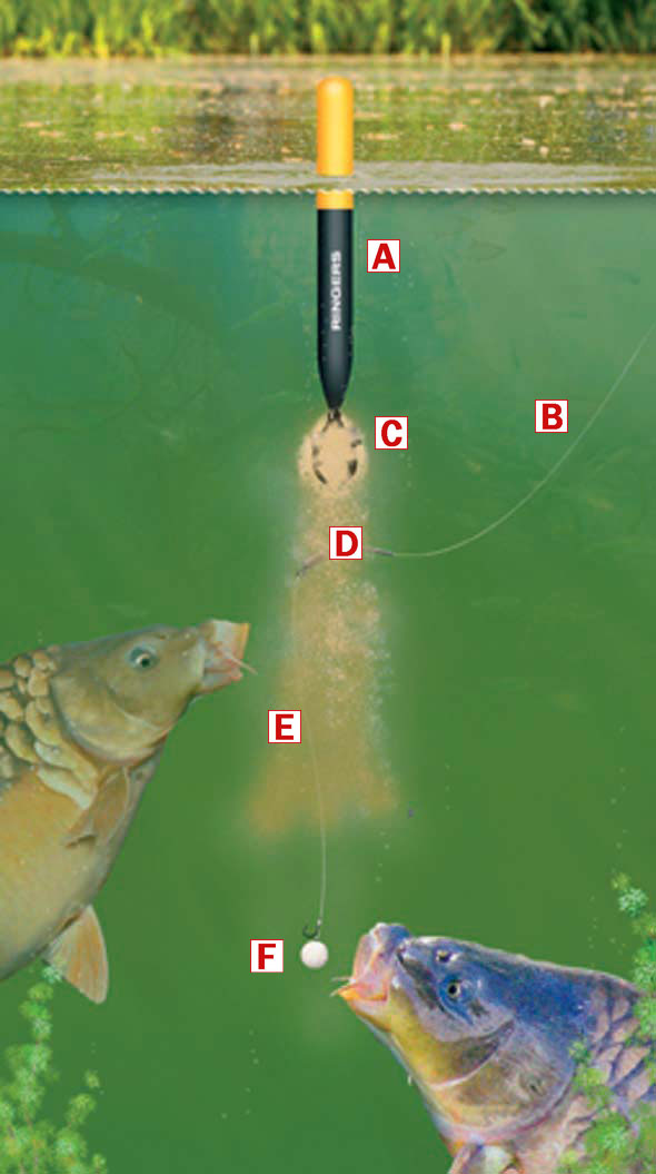 How to make a bagging waggler rig for catching big carp for Where can i buy worms for fishing near me