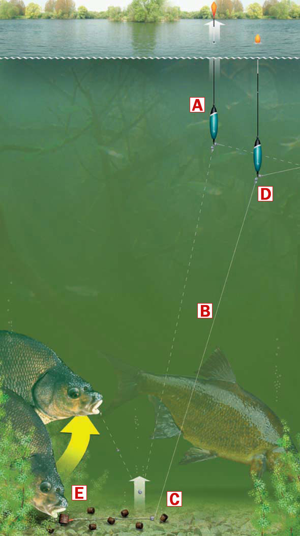 How and when to use a driftbeater float rig angling times for Ice fishing near me