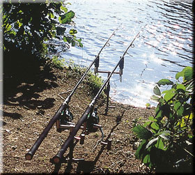 ROD Any carp rod will do for snag fishing. The rod set-up and the use of balanced tackle are much more important than a powerful rod.