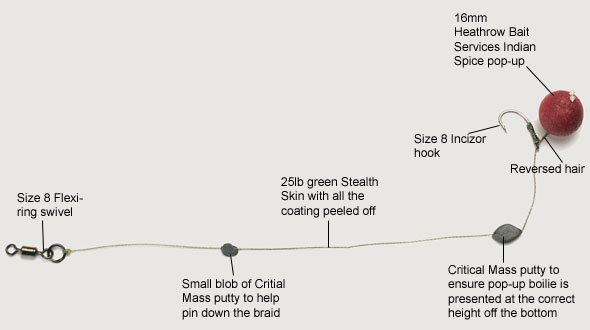 hair rig diagram how to make a reverse hair-rig for carp fishing — angling ... shark rig diagram