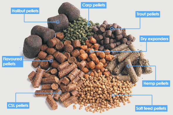 pellets.jpg