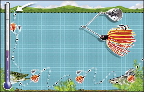 spinner-bait-diagram.jpg