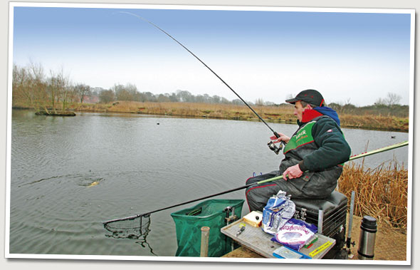 Feeder fishing with bread for carp angling times for Fishing with bread