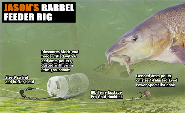 Barbel Fishing With Pellets Angling Times