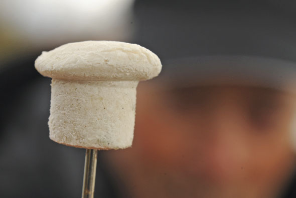 Fishing with bread the magic mushroom tactic angling times for Fishing with bread