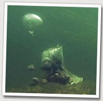 PVA-bag-exploding-mid-river.jpg