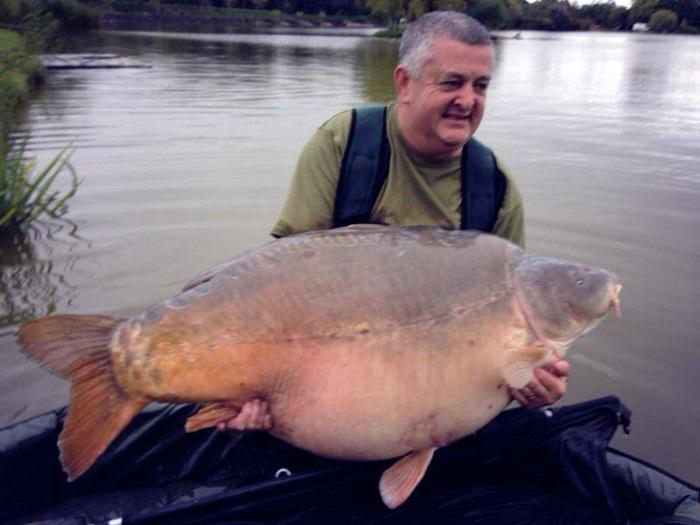 Gardner Tackle Critical Mass Rig Putty Carp Bream Tench Barbel Coarse Fishing