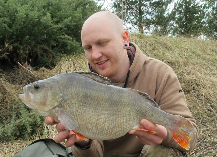 Lakes in top form for perch with 4lb 1oz fish topping bumper
