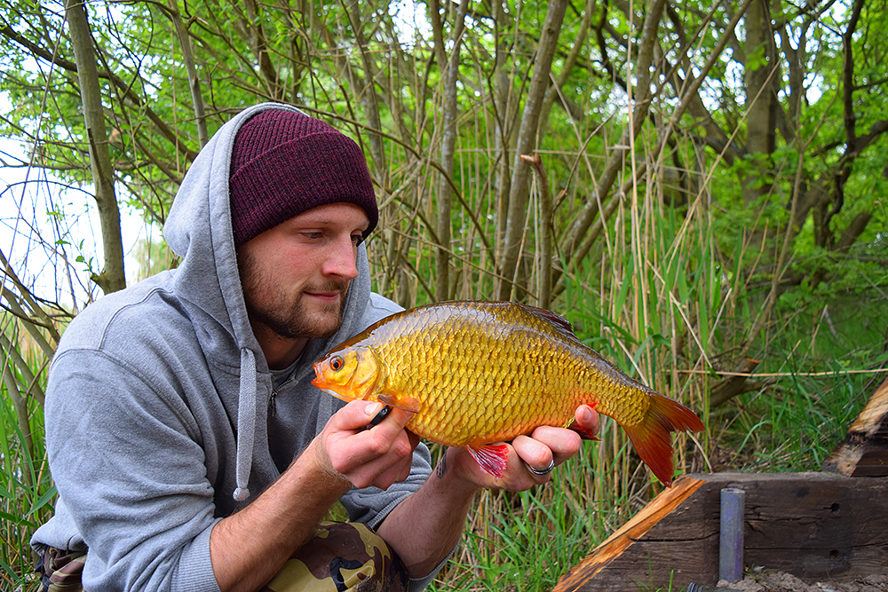 """To be honest I would prefer one of these to a monster carp any day"" – Luke Sparkes"