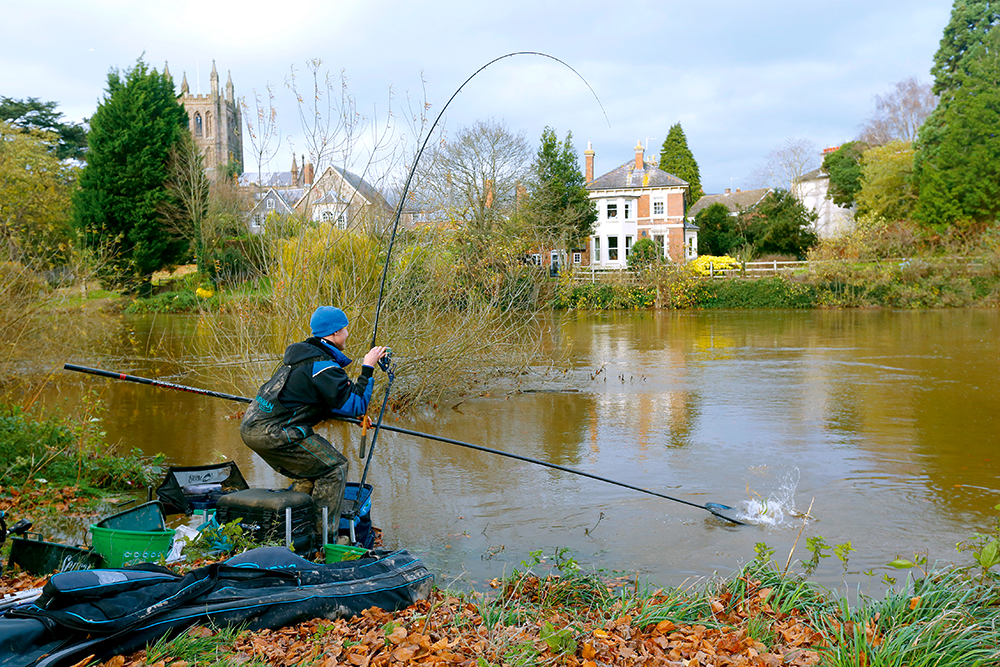 The Wye around Hereford fished its head off.