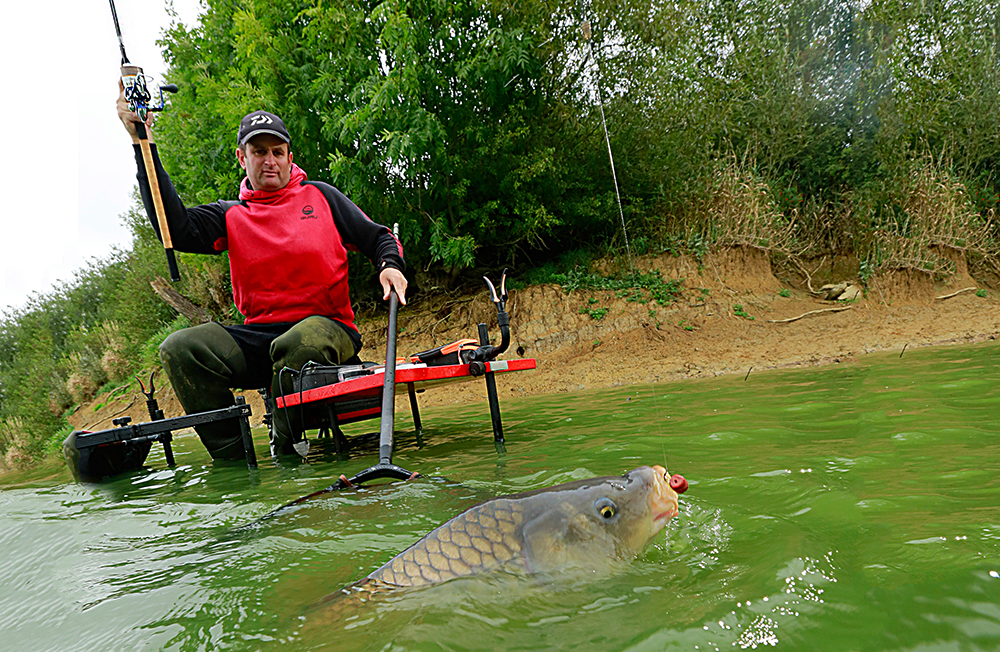 How to catch carp on the bomb and pellet — Angling Times