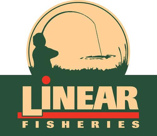 Linear-logo-300mm-high-profile-cut-.jpg
