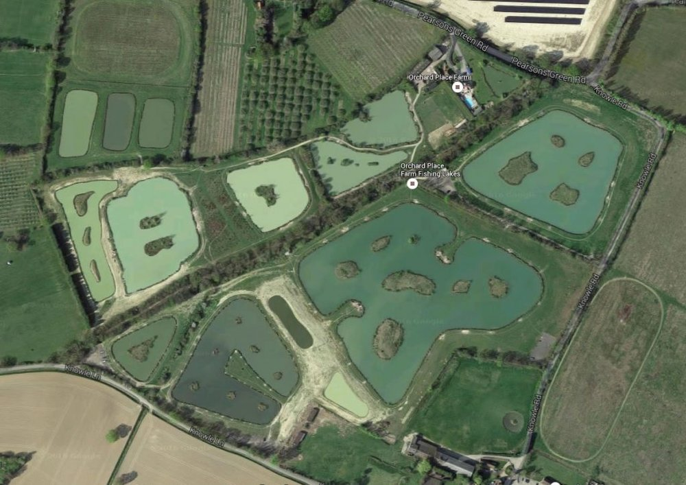 Orchard place farm fishing angling times for Fish farms near me