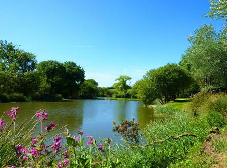 poctard-pic-meadow-lakes.jpg
