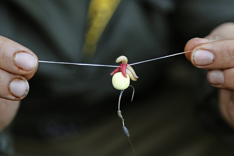 Pass the floss through the hair's loop and secure with a couple of overhand knots