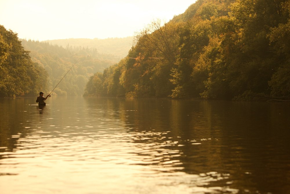 The River Wye at Symonds Yat, most scenic river fishing stretch to try