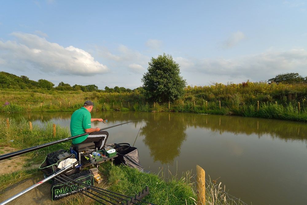 All the lakes at Bradshaw Hall Fishery hold roach.