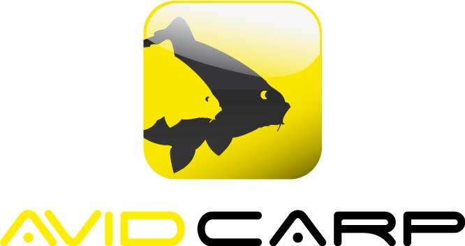 Avid_carp.jpg