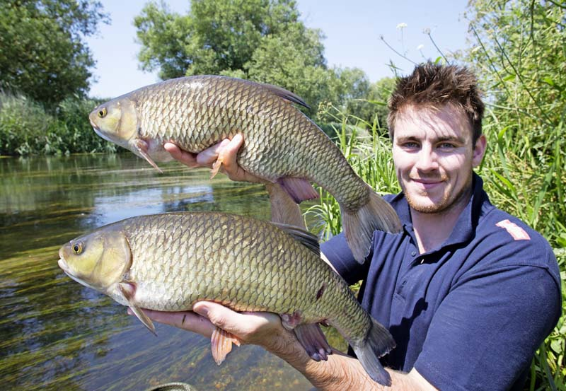 Brace of Royalty Chub - 5.12 and 5.14.jpg