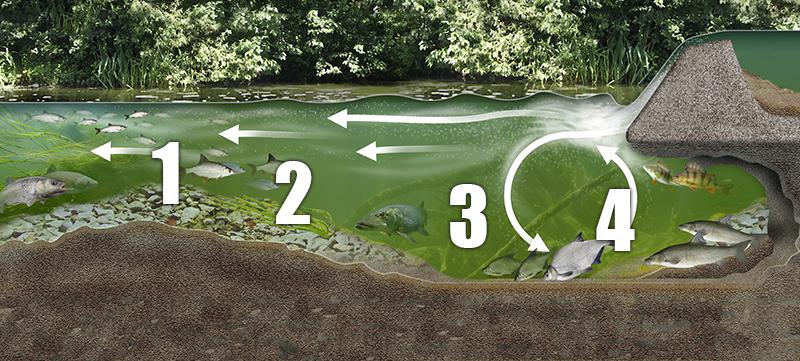 Weir cross section copy.jpg