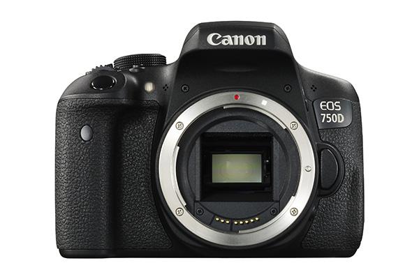 Canon 750D sensor.jpg