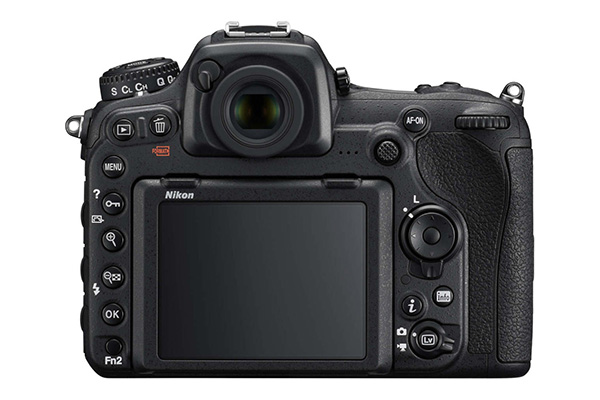 Nikon-D500-16-80-VR.jpg