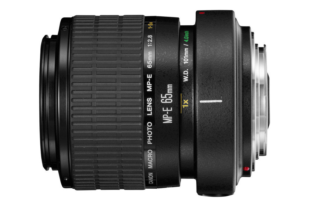 The powerful Canon MP-E 65mm f/2.8 1-5X Macro Photo