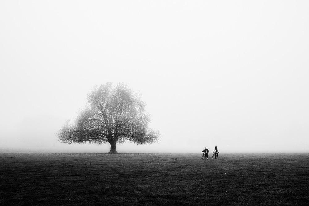 Craig-Reilly-Photography-Peckham-Rye-bikes.jpeg