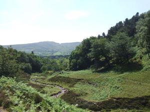 Grindsbrook Clough, Peak District