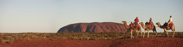 Uluru-Camel-Tours,-Red-Cent.jpg