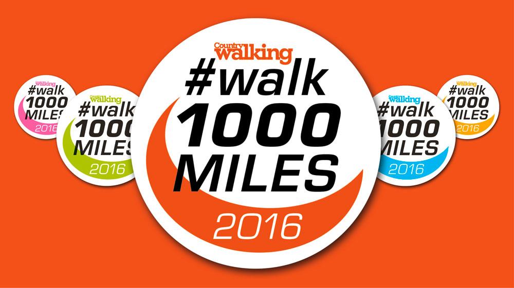 Walk1000miles.jpg