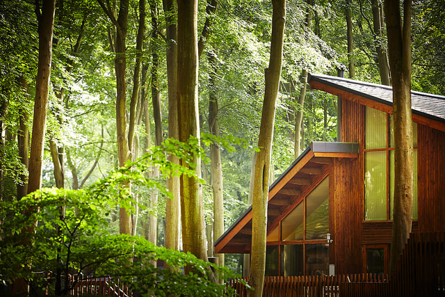 1.%20Forest%20Holidays%20Golden%20Oak%20cabin.jpg