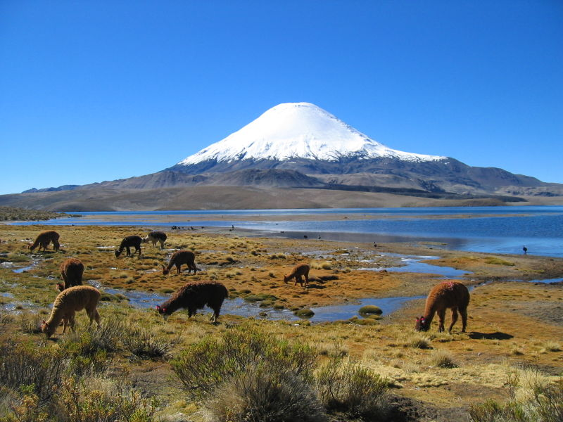 Parinacota%20Volcano,%20northern%20Chile,%20by%20mtchm.jpg