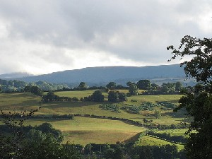 Herefordshire3.jpg