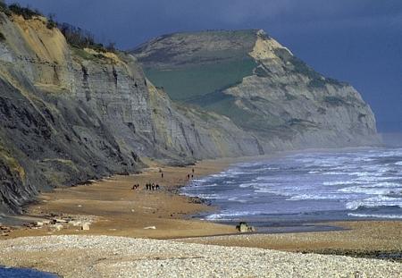 Dorset,%20Charmouth.jpg