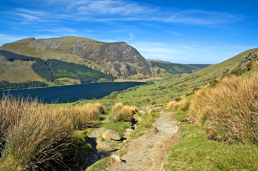 On the Snowdon Ranger Path, Mynydd Mawr beyond. Photo: Alamy