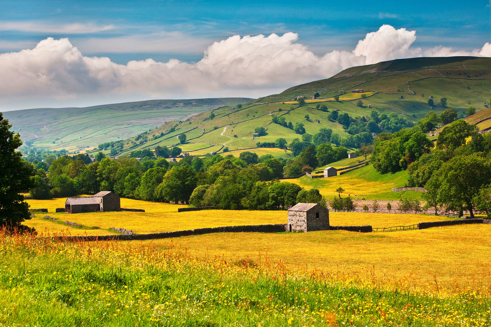 Quintessential Yorkshire is a feature of this mammoth walk.