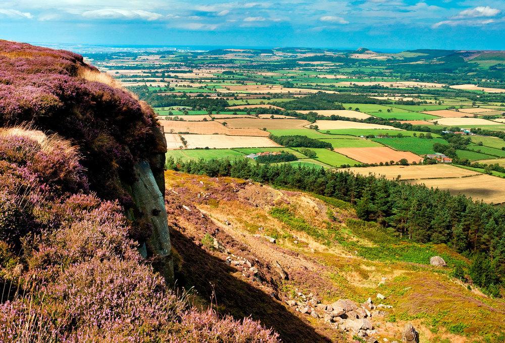 The North York Moors. : Mike Kipling / Alamy