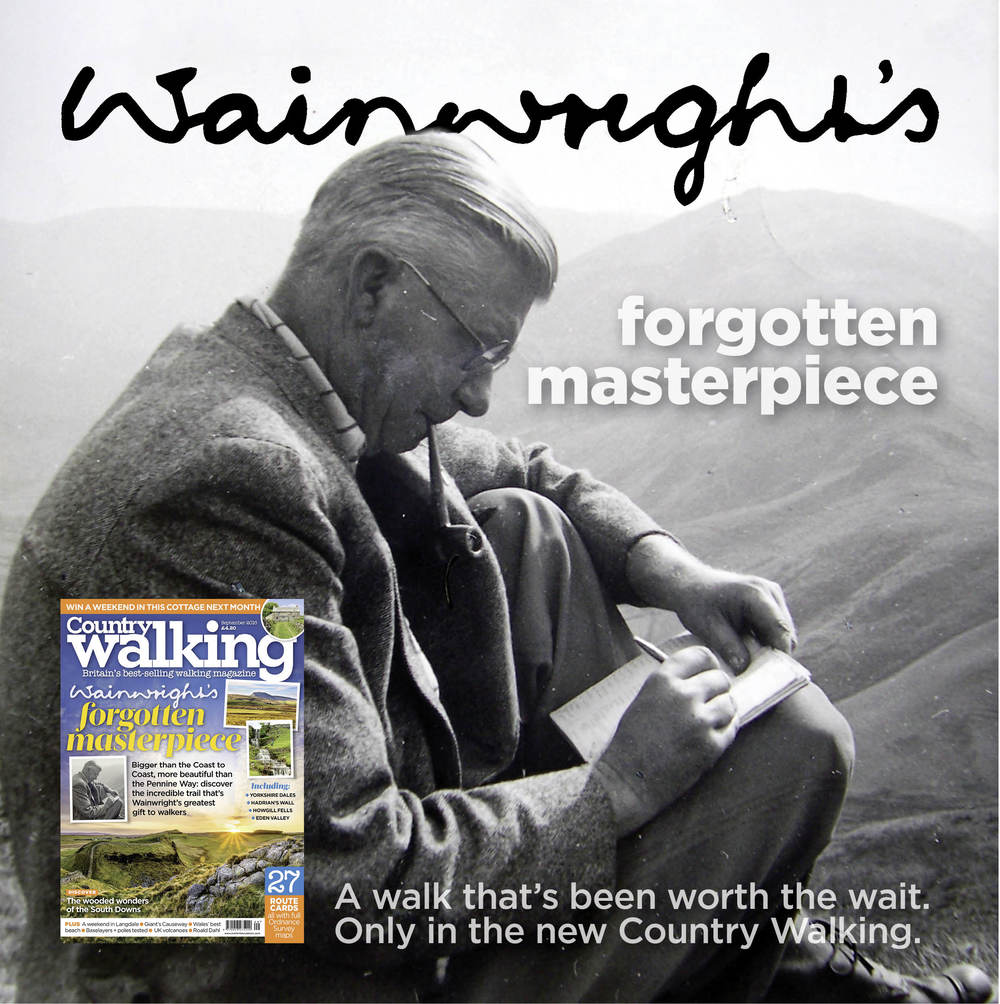 Wainright 1.jpg