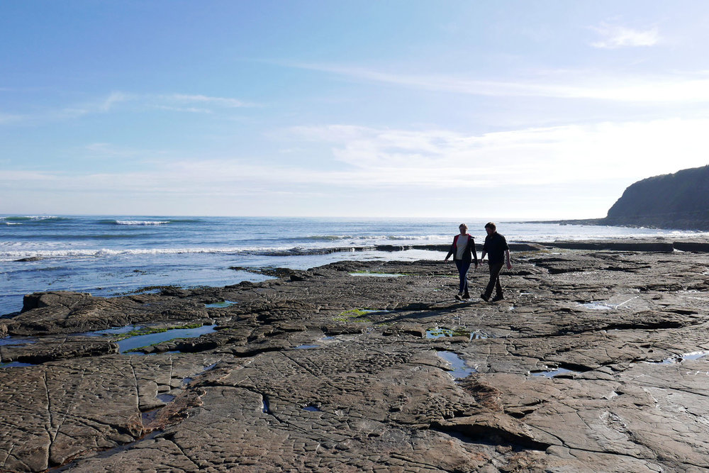 Exploring the Jurassic Coast in Saturday's final episode.