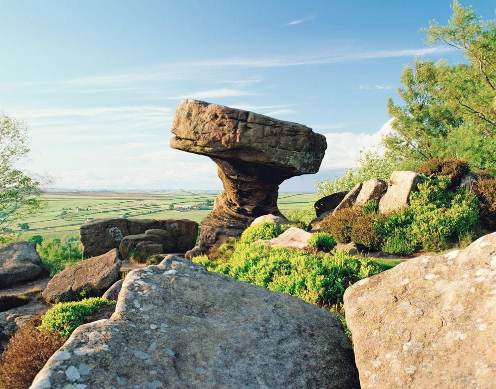 Brimham Rocks, Nidderdale, Yorkshire.