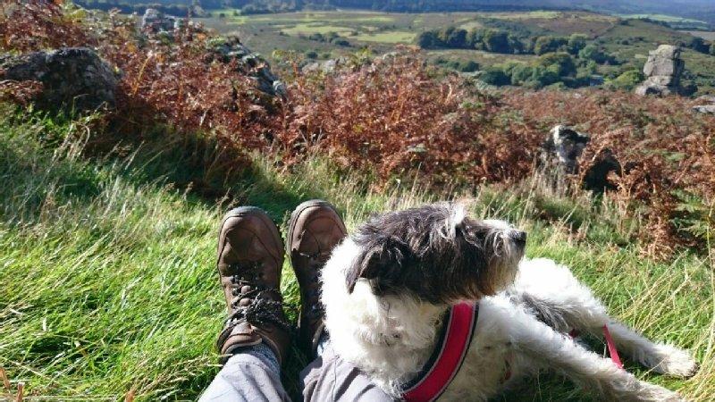 Joanna Swift, Bowerman's Nose,on Dartmoor.jpg