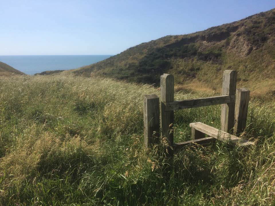 Mandy Harrison shot this wistful stile just outside Morwenstow on the coast path, as it dreamed of boot-treads passed.