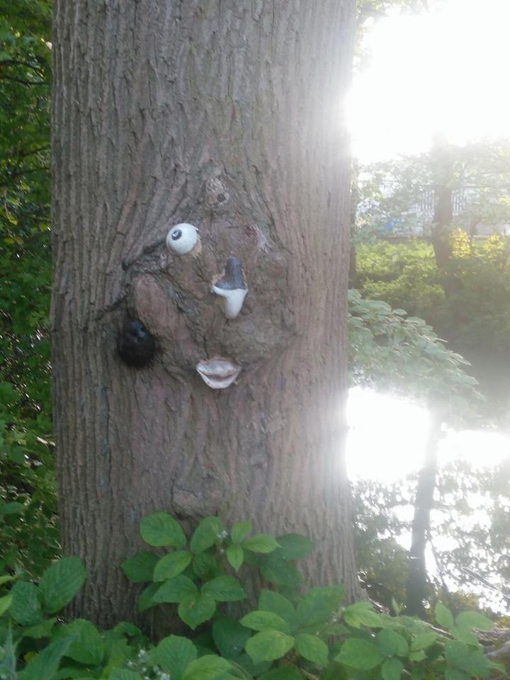 A human-tree hybrid experiment gone horribly wrong. 'Please. Kill me' heard Kelly Watkin.