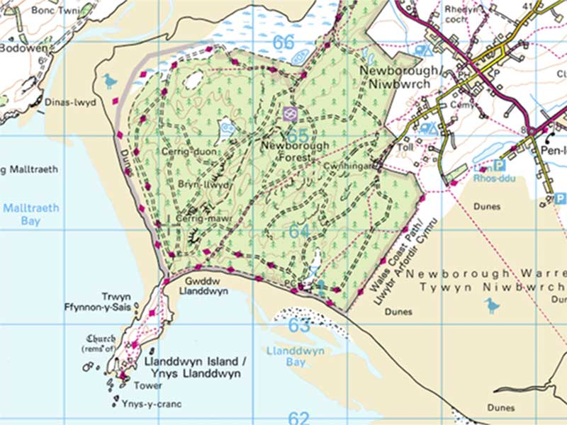 LOCATION FINDER    Where:  Llandwyn Island, Anglesey Map and grid ref: OS Explorer 263, SH386626  Getting there:  Sitting at the southern tip of diamond-shaped Anglesey, Llandwyn is only accessible on foot from the village of Newborough, through the dunes of Newborough Forest.  Why visit?  Aside from the incredible views, fascinating geology, red squirrels and abundant marine life, this tiny tidal island is also rich in folklore. It's associated with St Dwynwen (Llandwyn means 'church of Dwynwen'), the Welsh patron saint of lovers, who prayed for the happiness of lovers after a run-in with a nasty chap called Maelon. It's said she lived as a hermit on the island in later life.